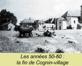 cognin village